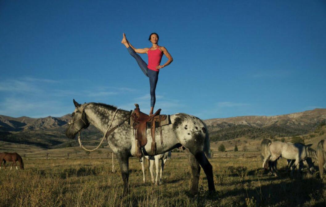 01. 2. horse-yoga