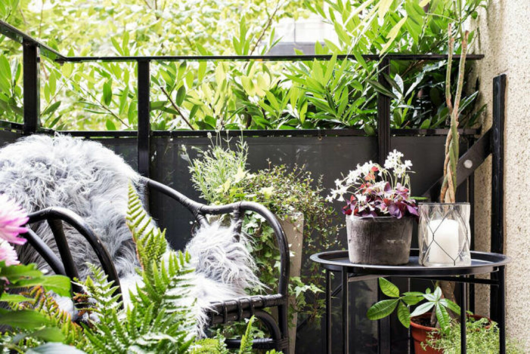 Scandinavian balcony with green plants and black furniture.