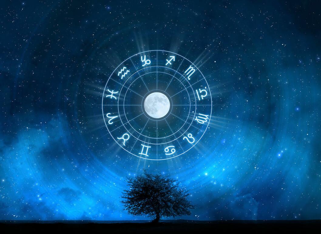 02. nya-horoskop-stjarntecken