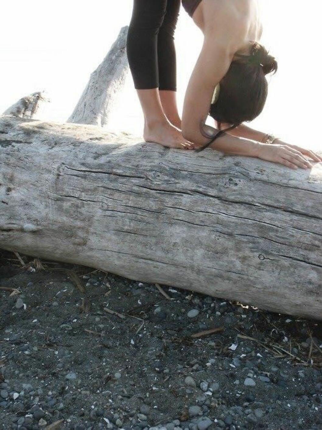 03. yoga-tree