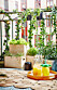 Summer balcony with rug, plants, herbs, vegetables and string lights.
