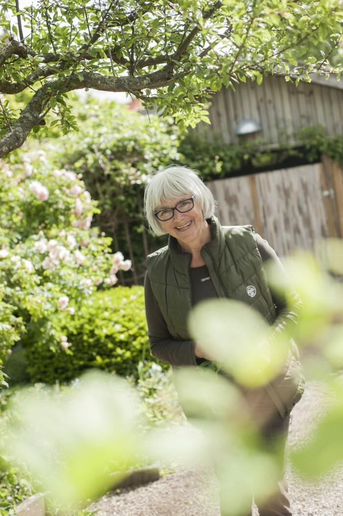 Christina Ekman Ljungström vårdar Ulla Molins trädgård