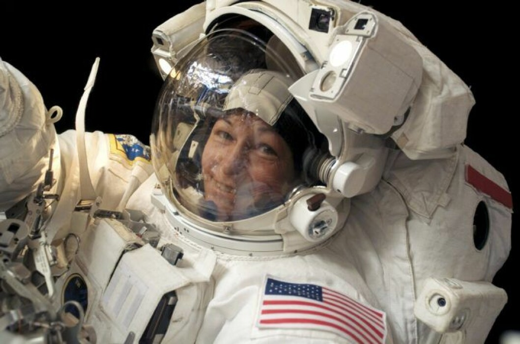 ISS repair spacewalk. Extravehicular activity (EVA, or spacewalk) being carried out by American astronaut Peggy Whitson (born 1960). Whitson was the first female mission commander at the ISS (International Space Station). This spacewalk was undertaken in order to repair the Bearing Motor Roll Ring Module (BMRRM), which is part of the ISS's Beta Gimbal Assemblies (BGAs). The BGAs orientate the ISS's solar panels towards the Sun when the ISS changes direction. Photographed on 30th January 2008. (c) Science Photo Library /IBL Bildbyrå