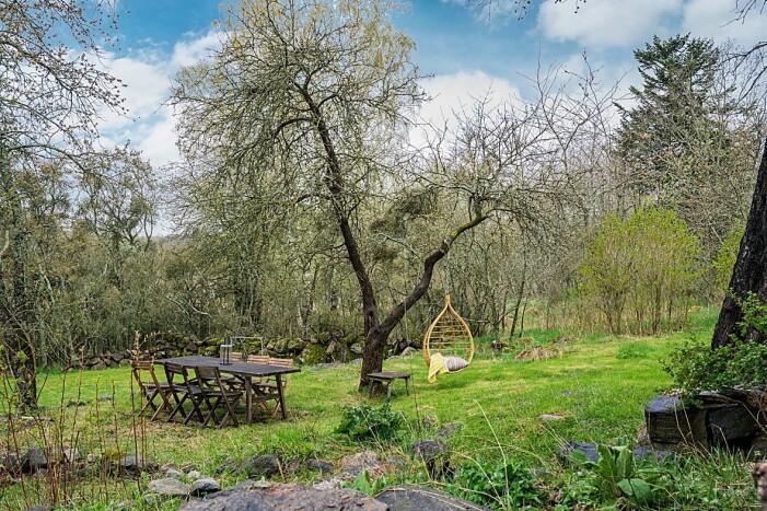 Trädgård intill Jenny Strömstedts torp som är till salu