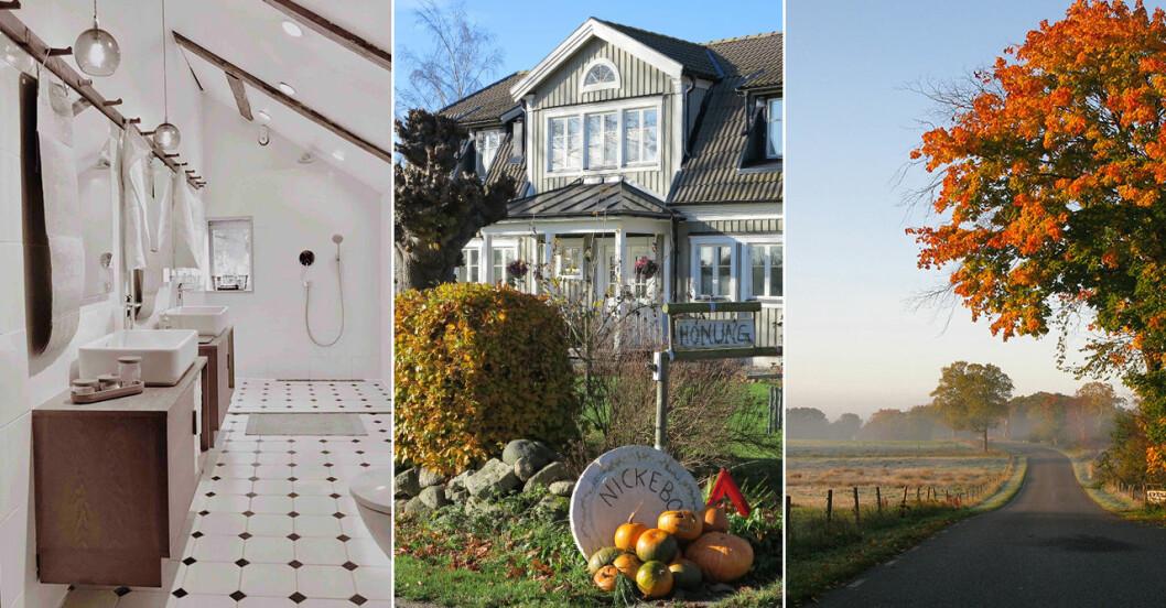 Hyr hus på landet