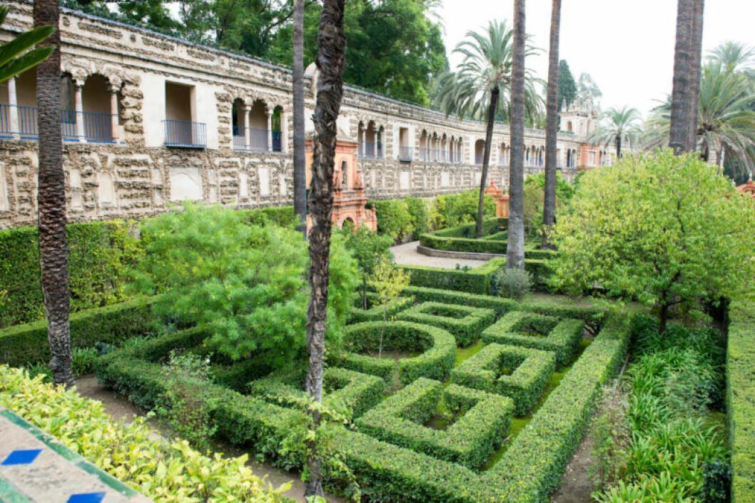 En bild på trädgårdarna i Alcázar de Sevilla, där Game of Thrones spelats in.