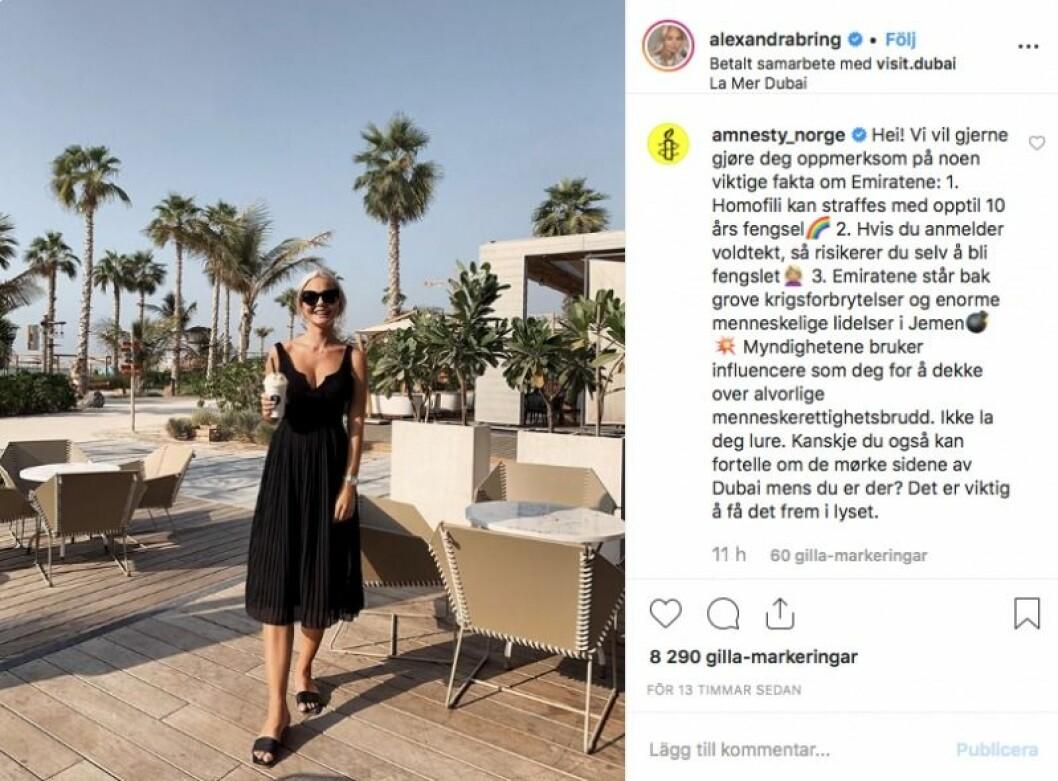 Alexandra Bring kritiseras av Amnesty