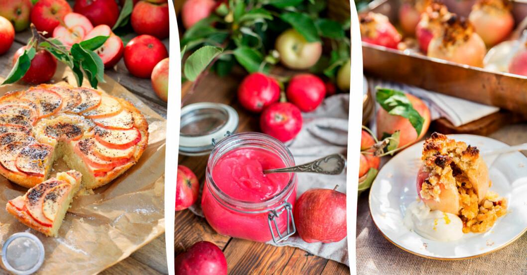 Skördetider! 7 goda och enkla recept med äpplen