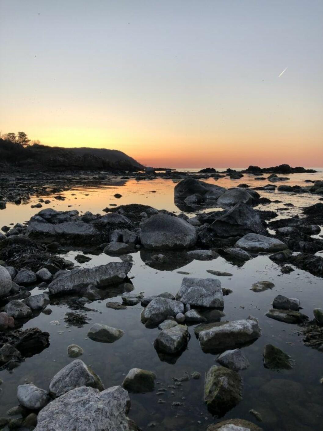 solnedgång på kullavik