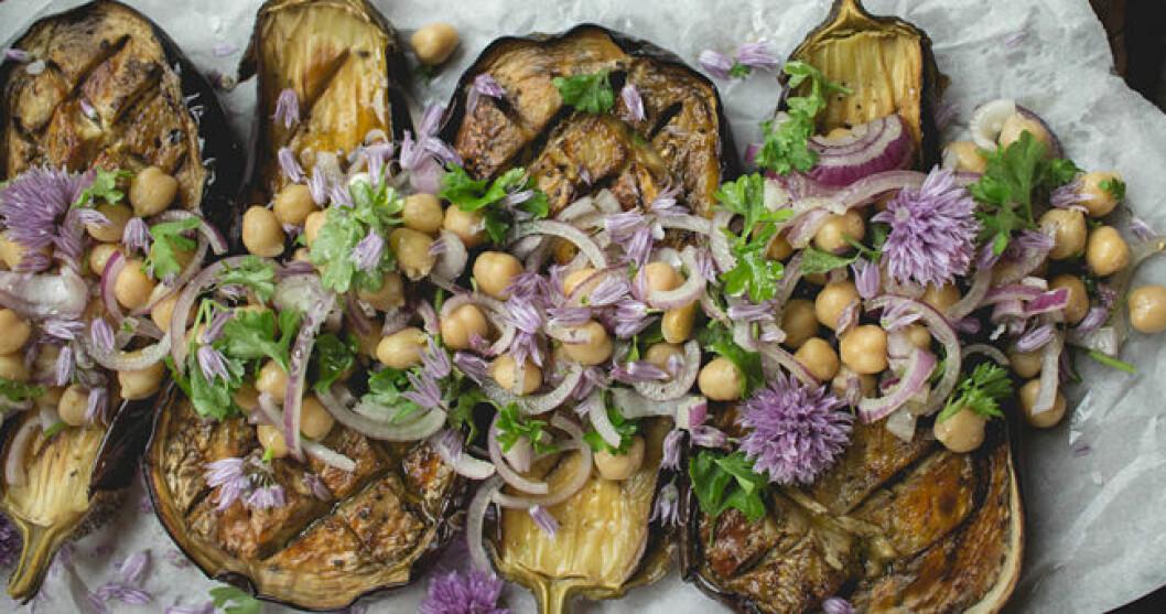 aubergine-kikartor