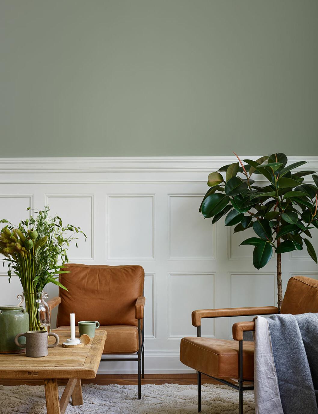 Salvia 825 är en diskret grön väggfärg.