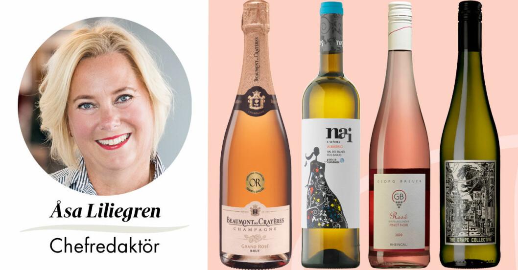 Feminas chefredaktör Åsa Liliegren tipsar om bästa bersåvinerna