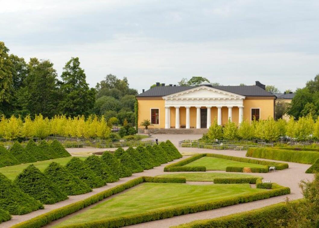 Botaniska trädgården Uppsala.