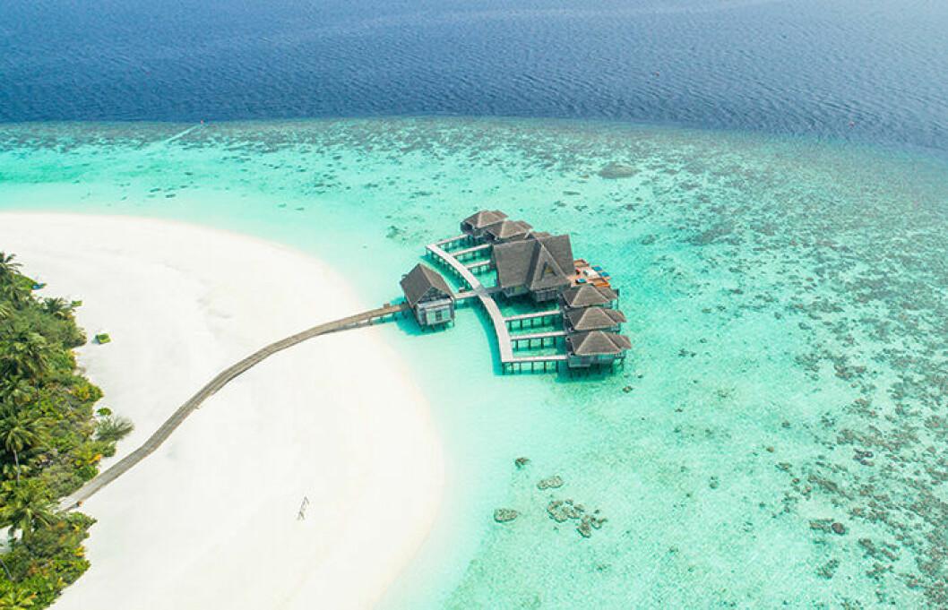 Många vill åka på bröllopsresa till Maldiverna