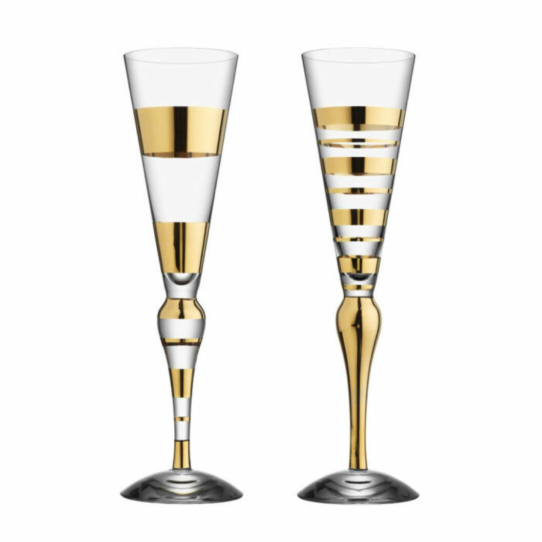 Champagneglas Orrefors