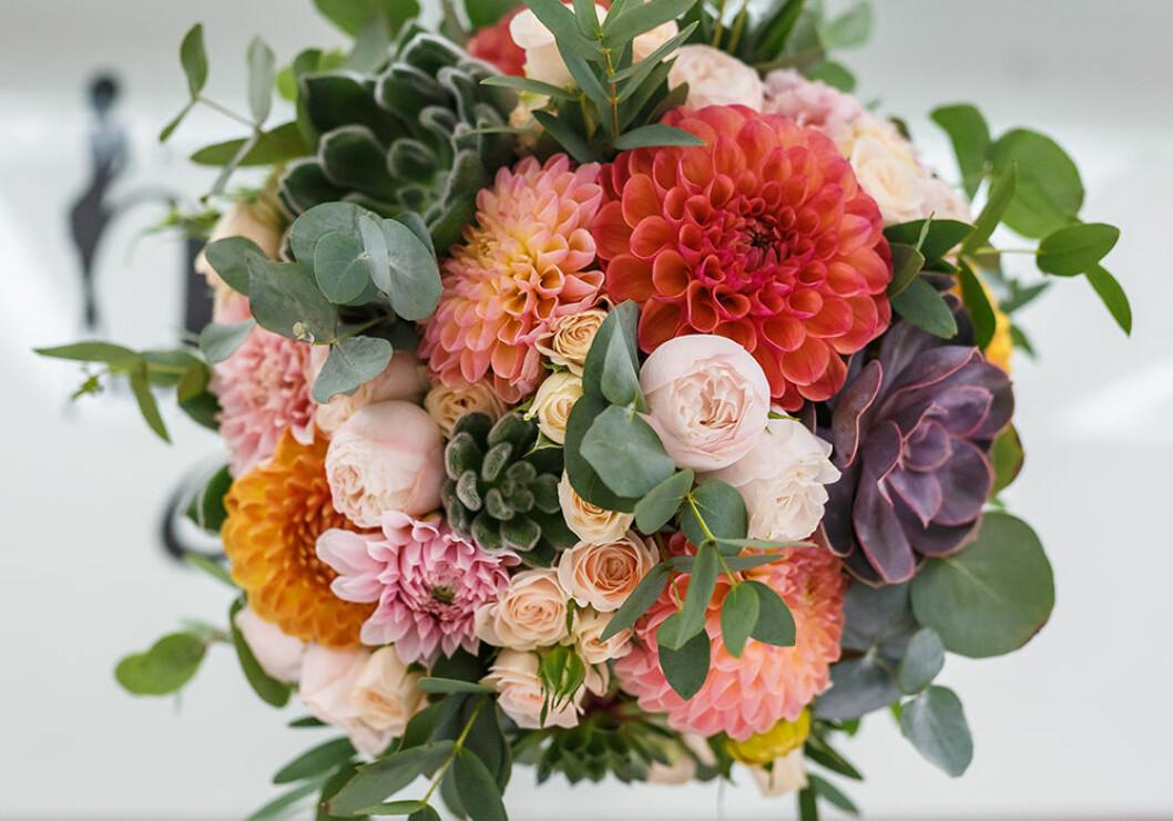 Dahlia i en bukett med eukalyptus och rosor