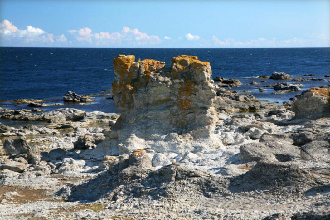 Digerhuvud, Gotland