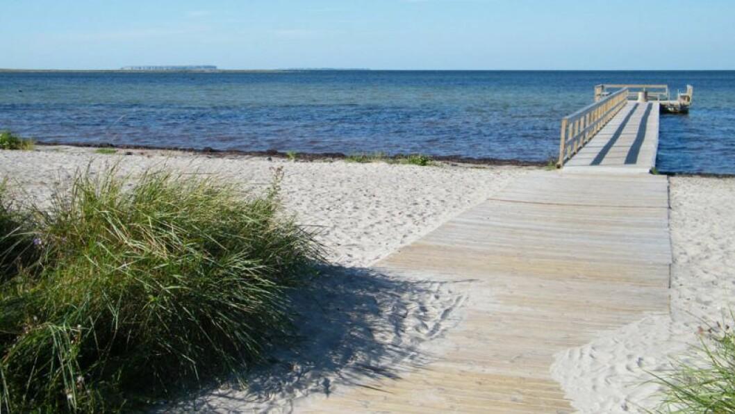 Djupvik på Gotland.