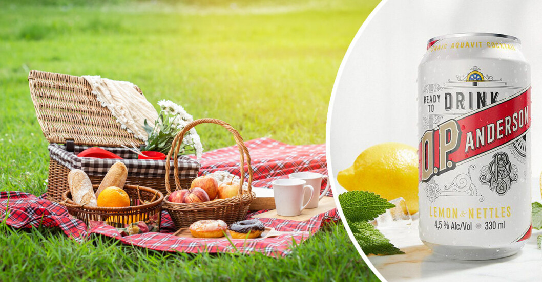 picknick och drinkar på burk