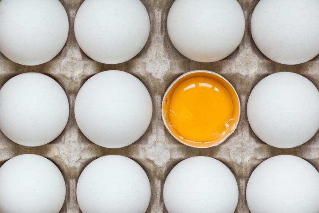 Ja, det går att frysa in ägg, men inte med skalet på.