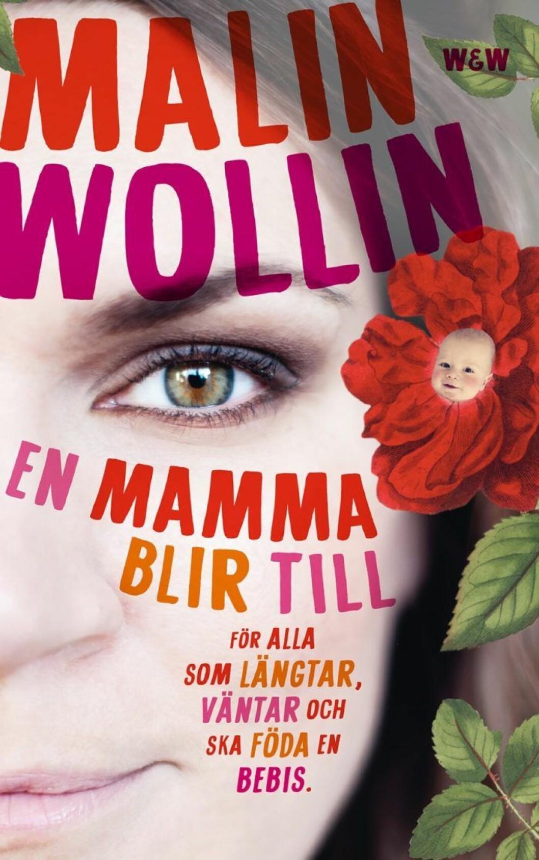 En mamma blir till: För alla som längtar, väntar och ska föda en bebis av Malin Wollin
