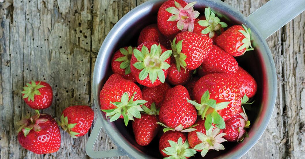 få jordgubbar att hålla sig färska längre