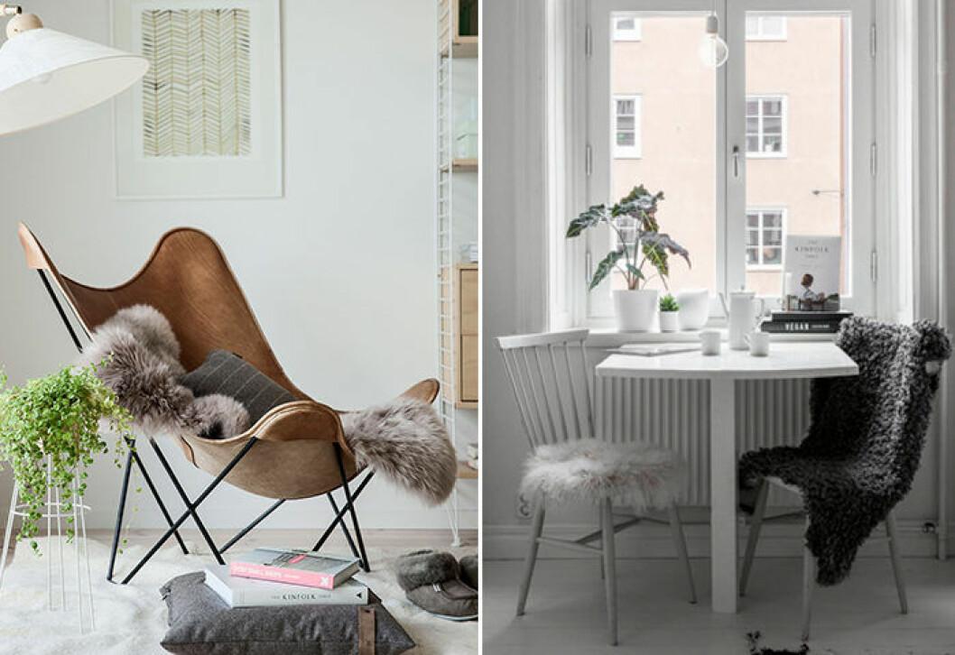 Fårfällar är populära inredningsdetaljer i det skandinaviska stuket
