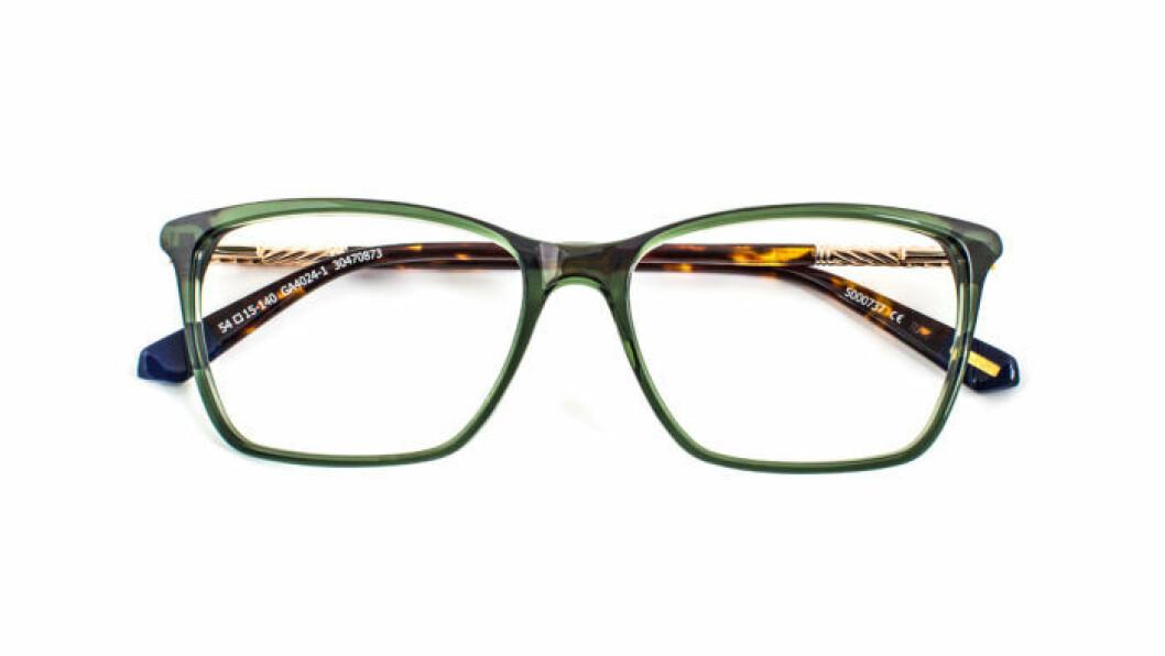glasögon-gant