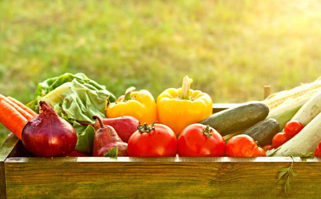 Frys in grönsaker som har blivit över för att slippa slänga bort dem.