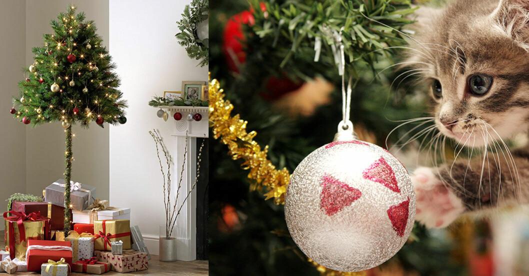 Halv julgran med pynt plus katt med julgranskula