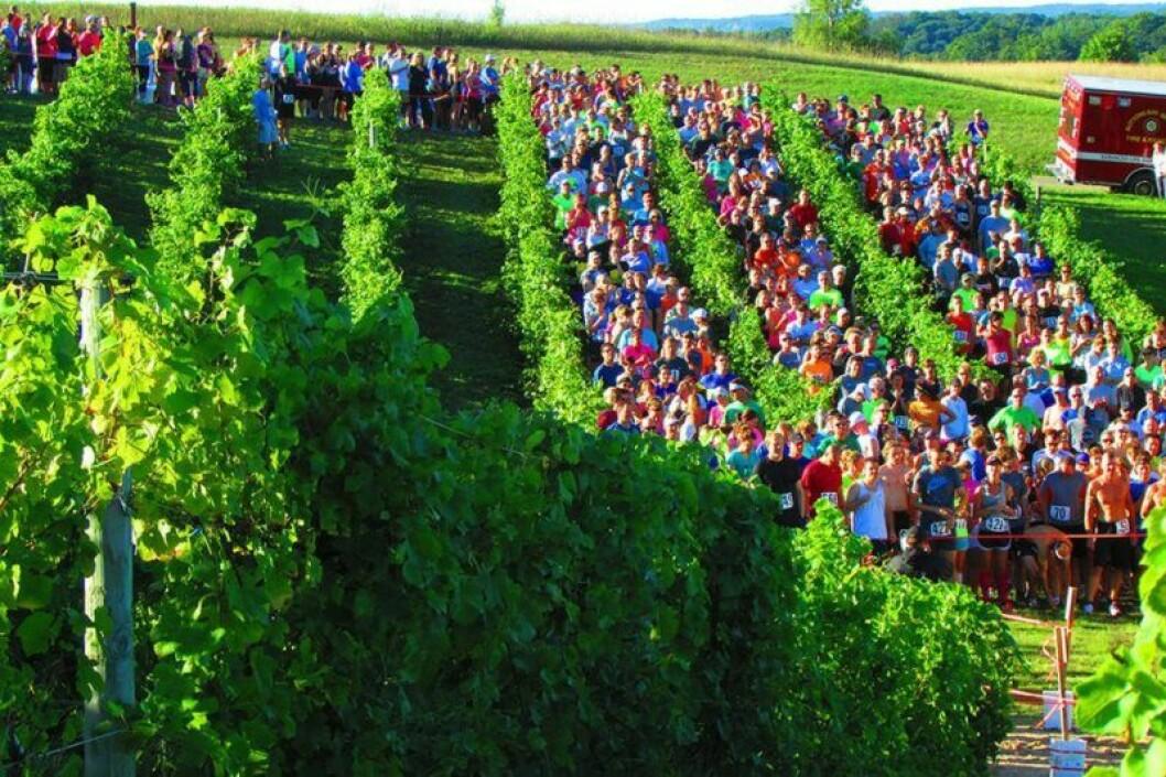 harvest stompede Foto: Kathleen Swineheart