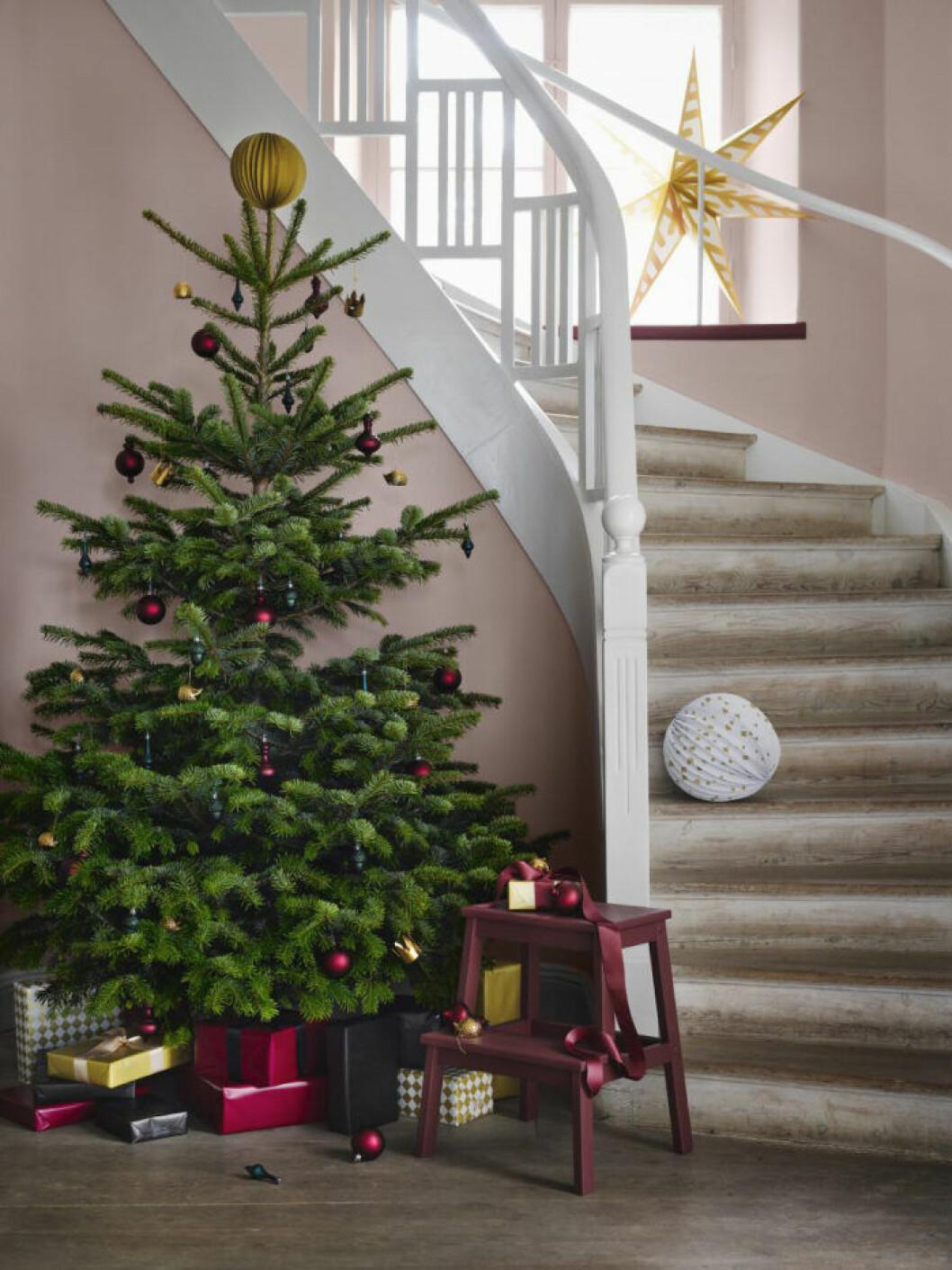 Julgran brons och vinrött