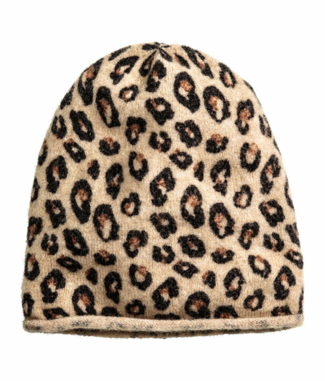 leopard-mossa-hm