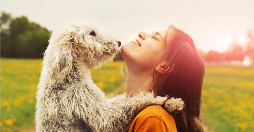 Hund som kramar sin ägare