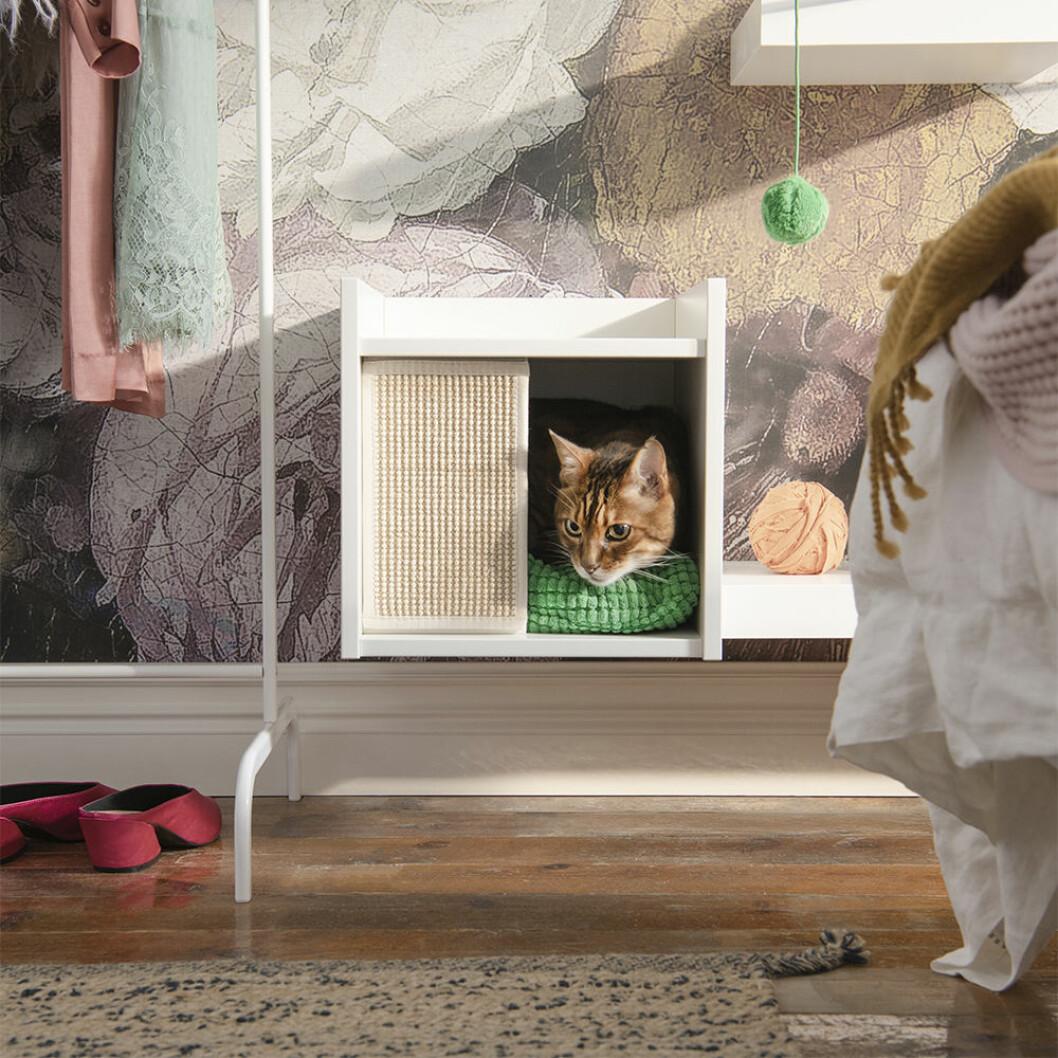 Stilfullt Katthus till bokhyllan från Ikea