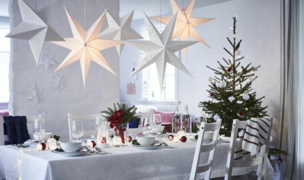 Vita julstjärnor hos Ikea julen 2019
