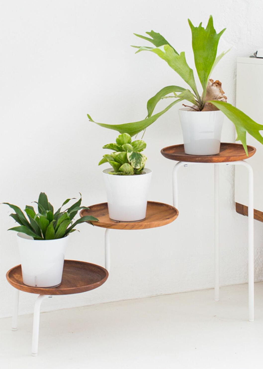 Ikeahack - gör en växthylla