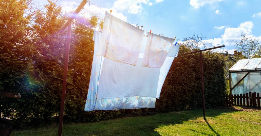 Tvätt som hänger ute och torkar