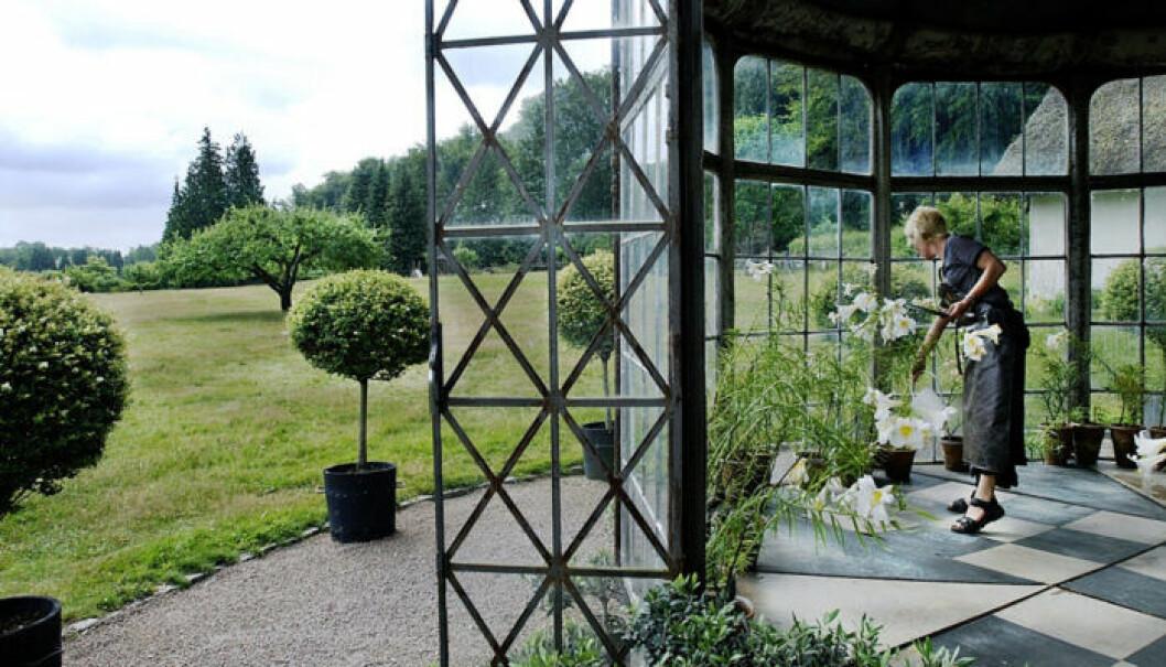 Tage Andersens lusthus i Norrvikens trädgårdar i Båstad. Foto: Jurek Holzer/ TT