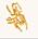 Guldfärgad ring formad som en stor skalbagge. justerbar. Ring från Ioaku.