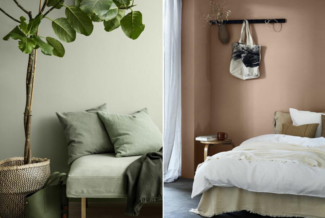Grön och persikofärgad vägg hos Jotun