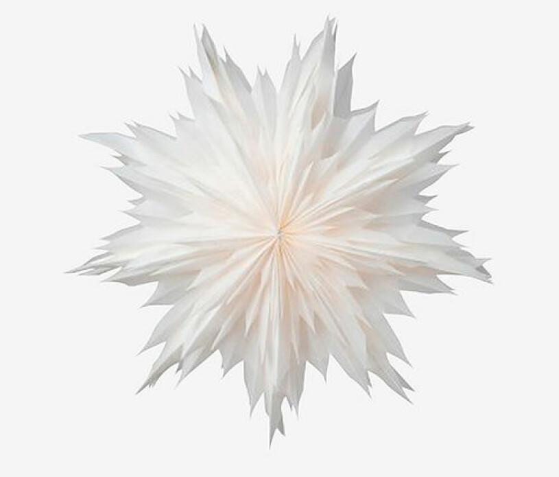 Vacker julstjärna i vit färg från Watt&Veke