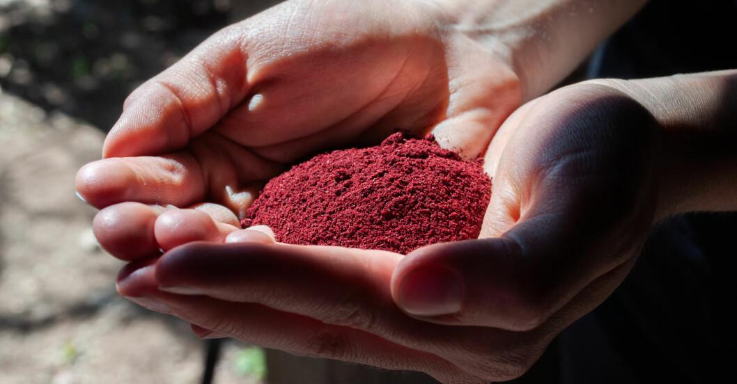 Koschenillsköldlöss som har torkats och krossats och bildat ett rött pulver som används som färgämne i en mängd livsmedel.