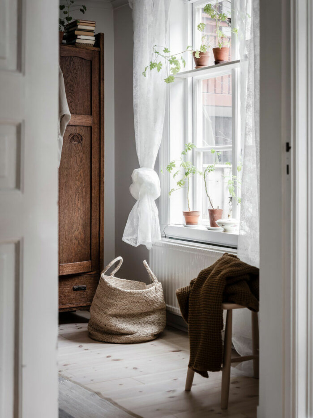 Kattvänlig inredning med växter i fönster