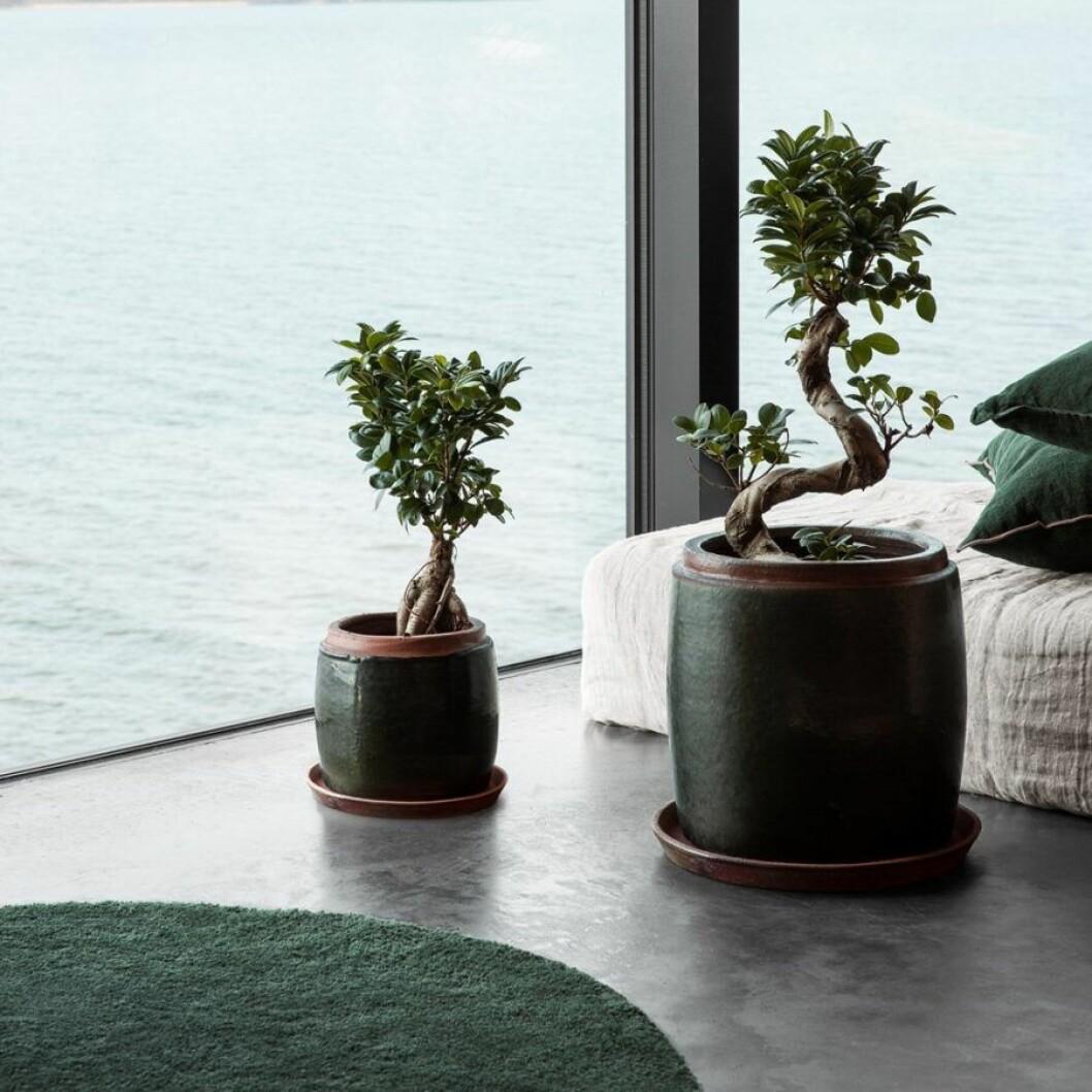 Höstnyhet Granit. Handgjord kruka i glaserad keramik. Mörkgrön kruka.