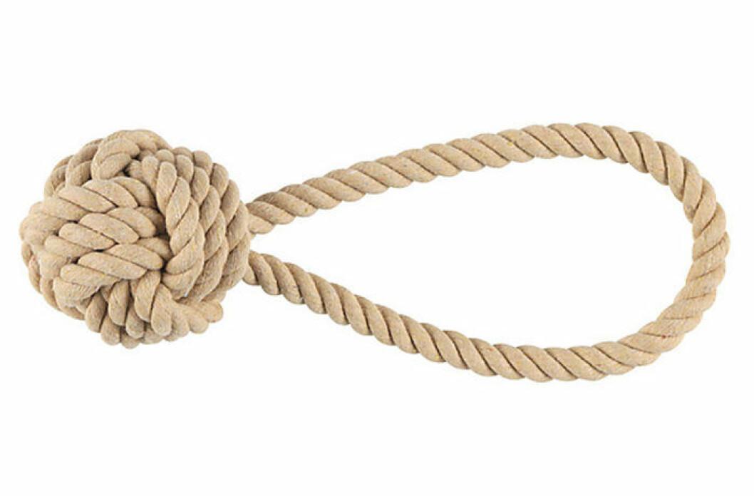 Stilren leksak för hundar från Clas Ohlson