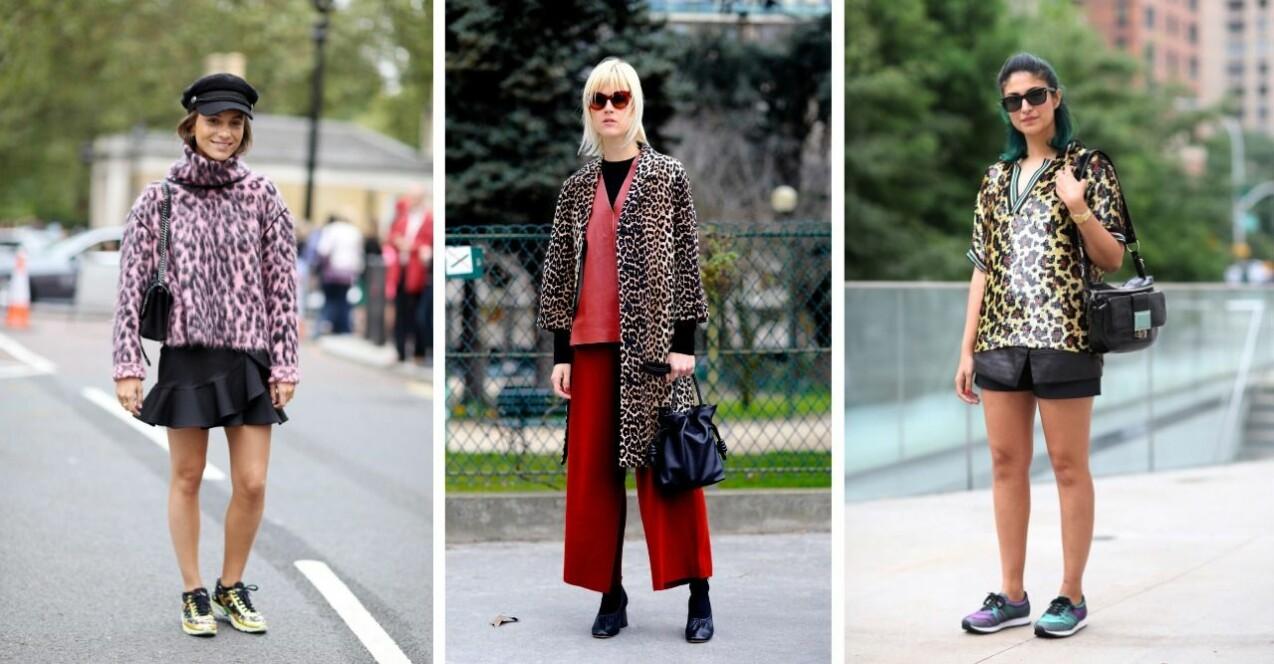 Tre tjejer i outfits med leopardmönster. Streetstyle.