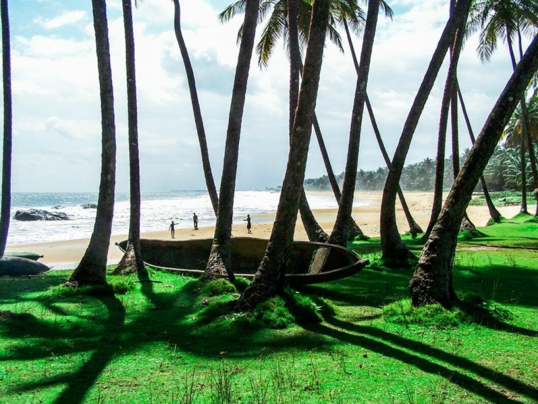 Strand i Liberia