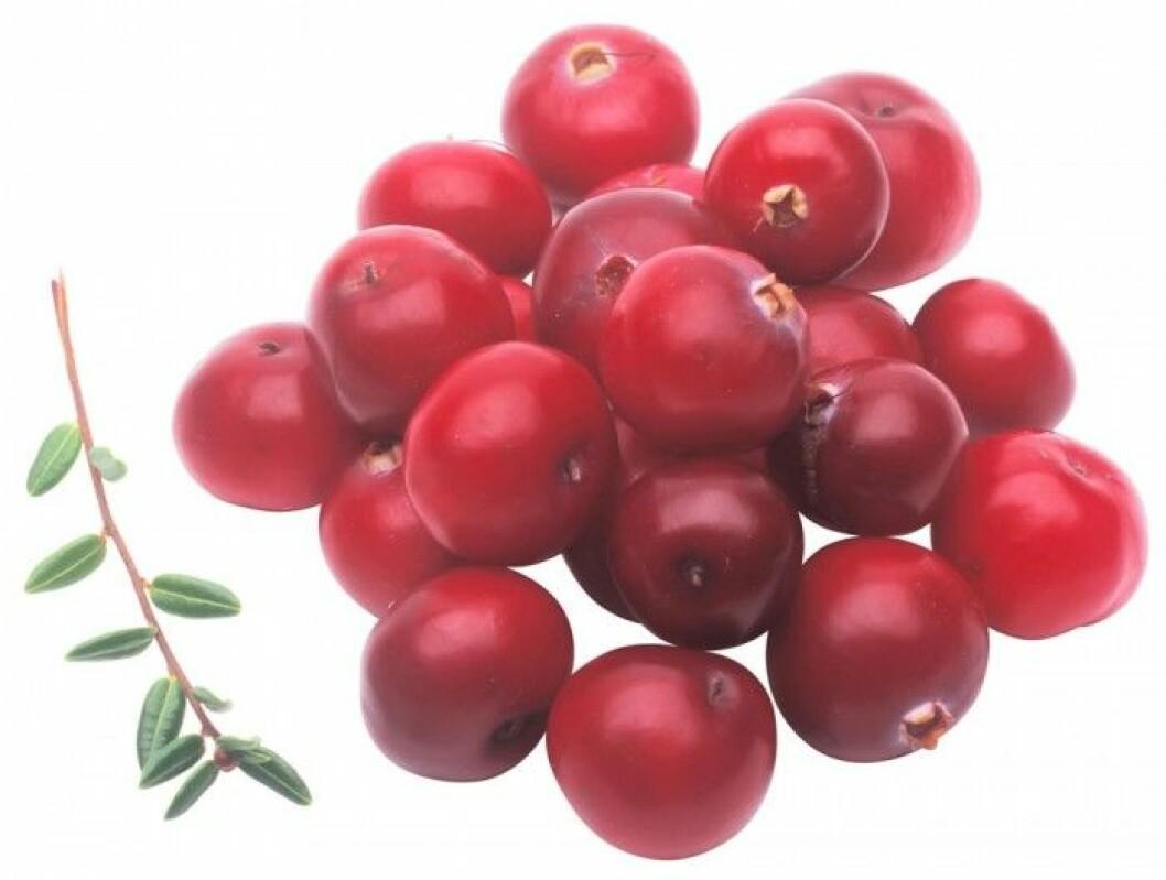 Lingon. Lingon innehåller vitaminer och mineraler men också en kraftig antioxidant som kallas reservatol. Den anses ha många hälsoeffekter, så som att skydda mot hjärt-kärlsjukdomar. De första lingonen kallas rålingon och är rika på pektin, en fiber som hjälper till att hålla blodsockret på en jämn nivå.