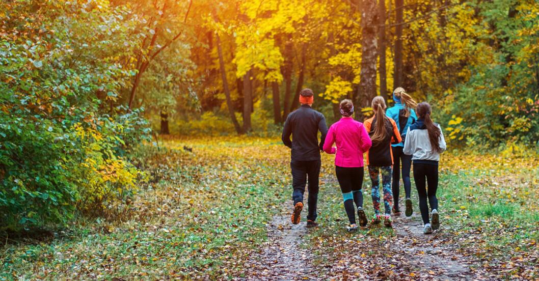 Träningsappar som kan ge dig den motivationen du behöver